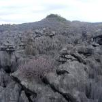 images/stories/Tour-nord-Madagascar/tsingy-gris-madagascar.jpg